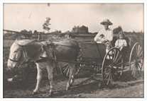A mother and her three small children going for a ride in a horse-drawn buggy